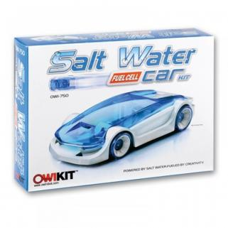 Salt Water Car Stem